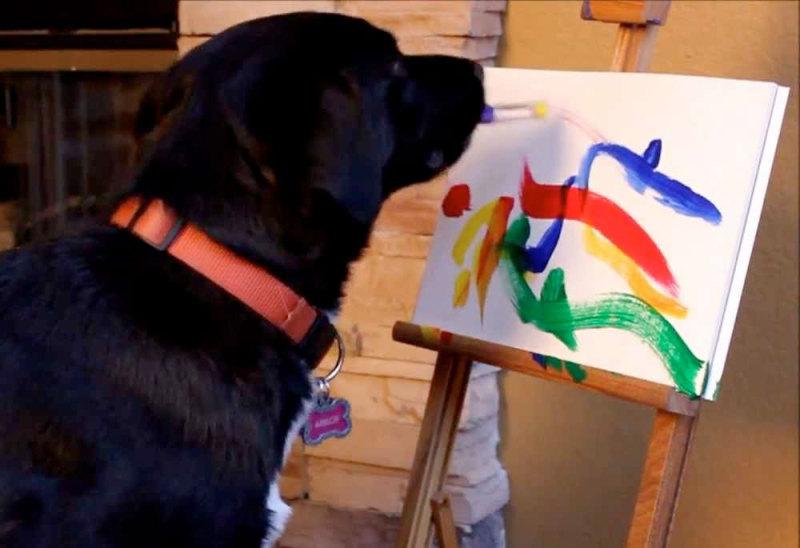 Arte de perros