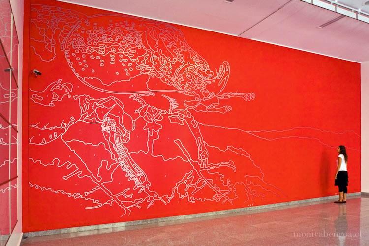 sinodendron-cylindricum-ciervo-volante-2009-monica-bengoa-01